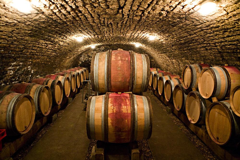 Burgundy0308.jpg