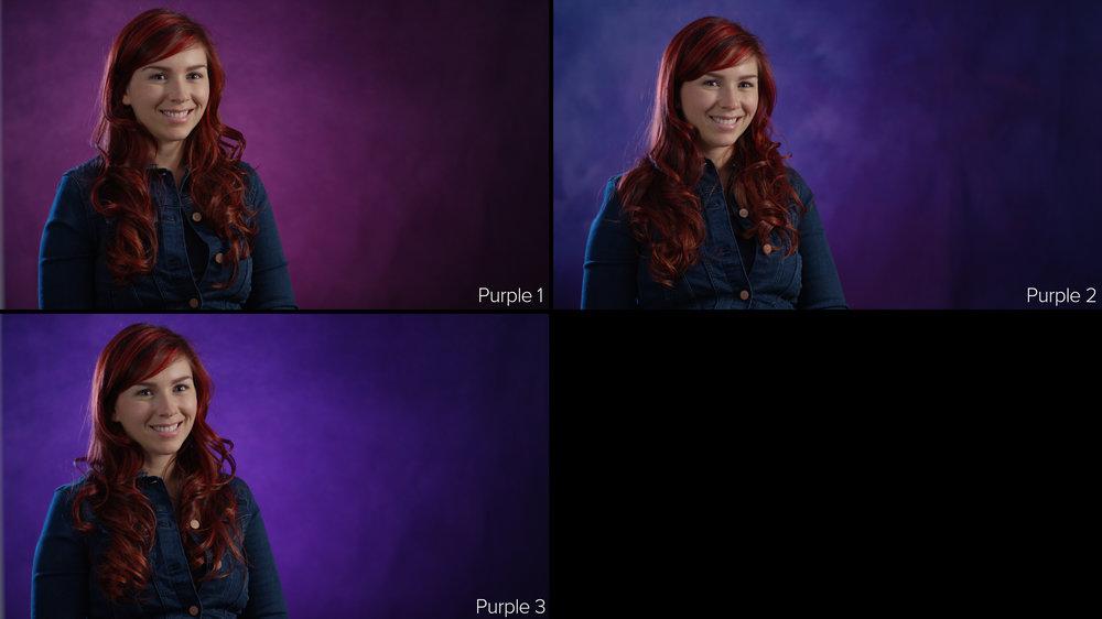 purple grid.jpg