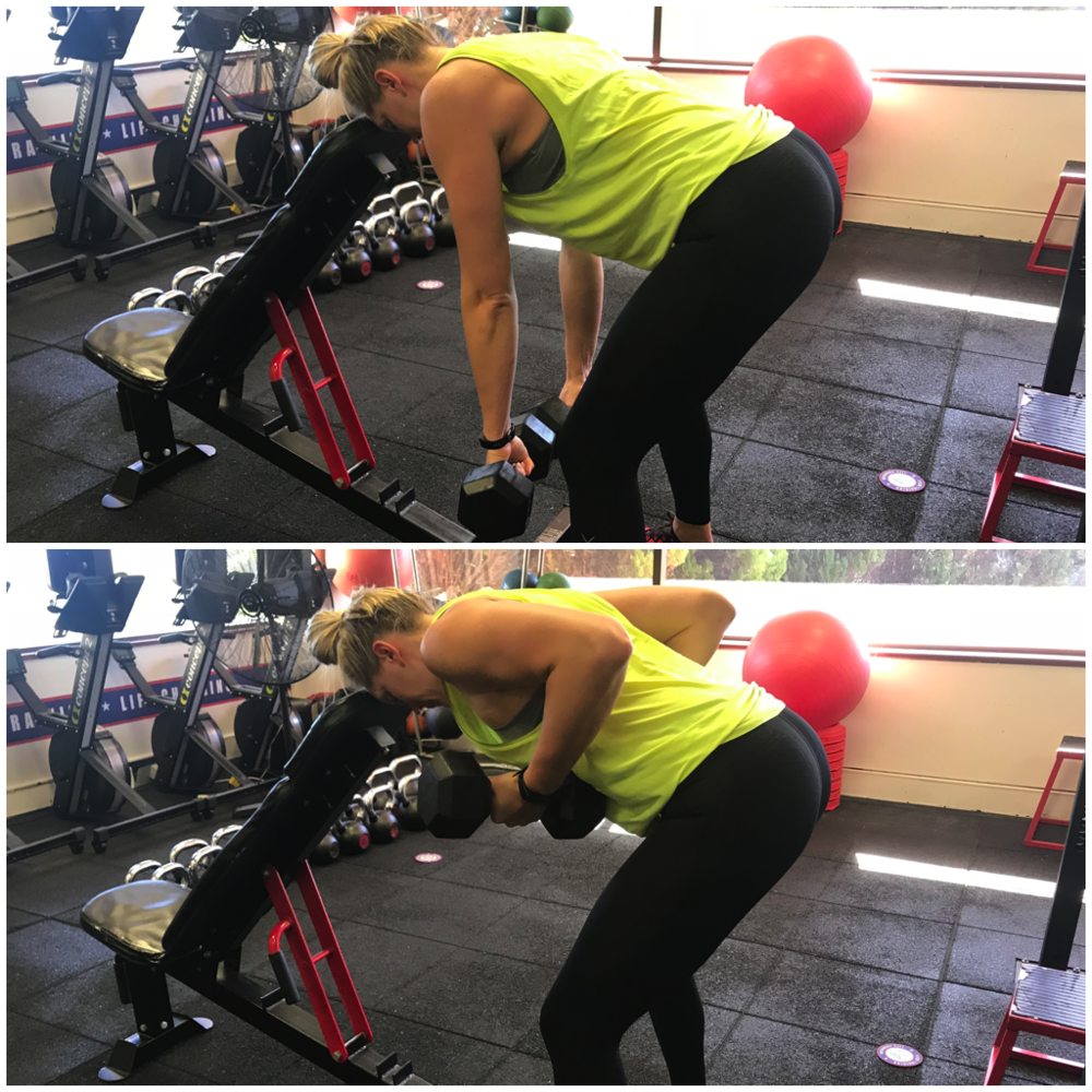 Bent Over Rotating DB Row.png