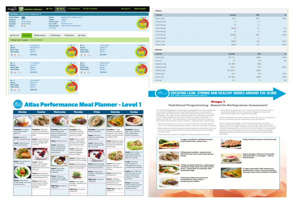 Nutrition-outline-1024x702.png