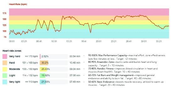 HR chart.jpg