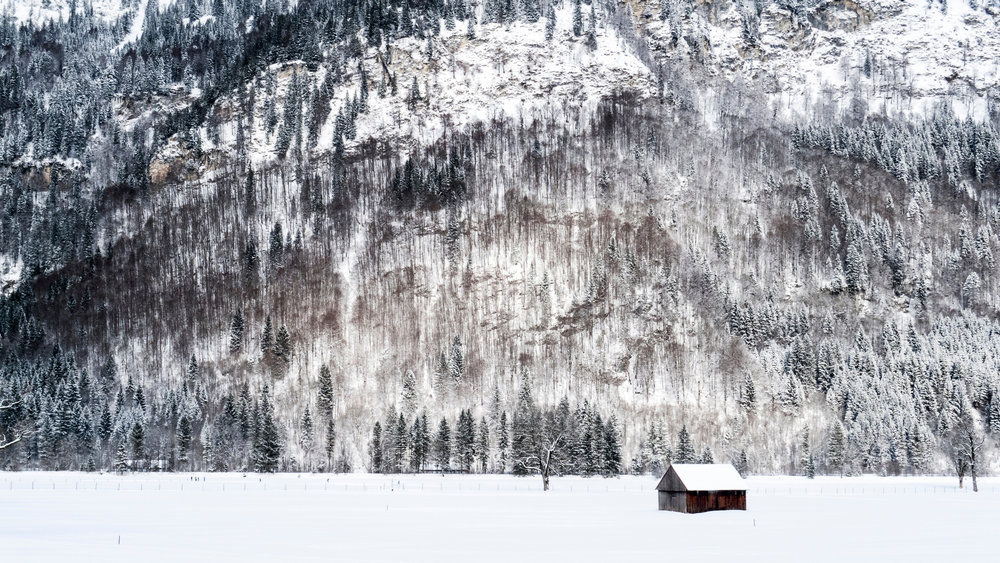 winter-with-snow-and-trees-with-cabin-in-graswang-germany.jpg