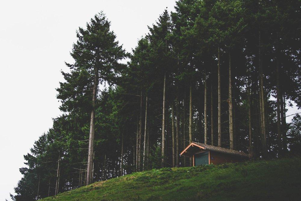 Rural cabin in California.