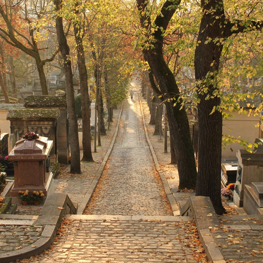 PERE LACHAISE - 2km / 35 minutes for short tour, 1 hour with bonus tracks / Cost of entrance: Free