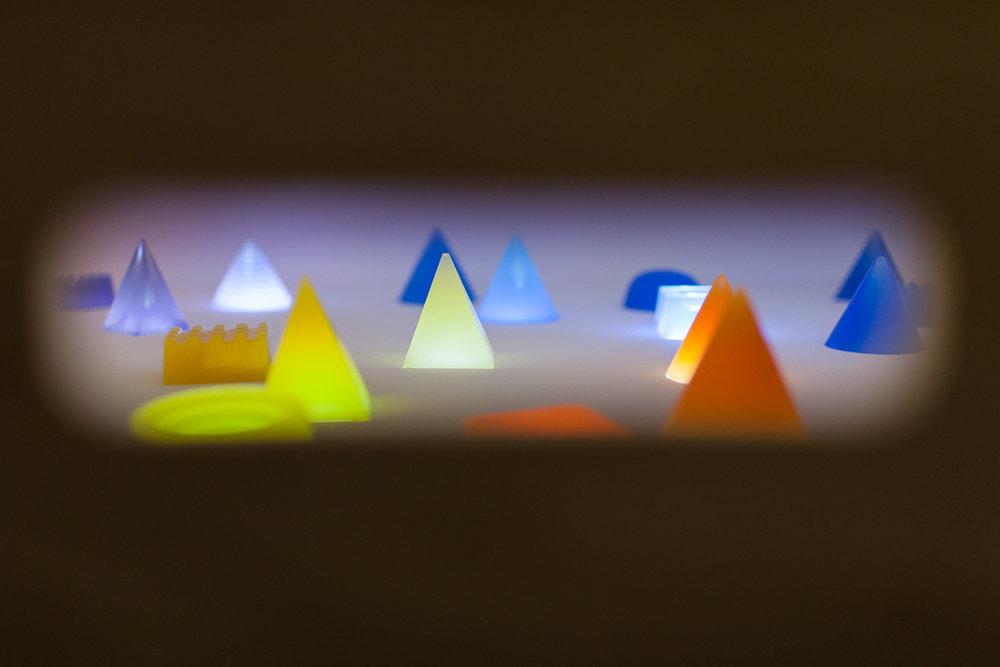 jelly safari - © vinciane verguethen -7732.jpg