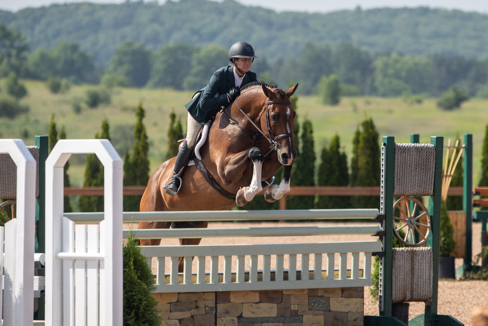 Caitlyn Shiels and Cassius claimed top four finishes in all of the High Performance Hunter classes!