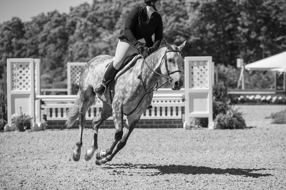 Katie Hawkins and Gray Street had an awesome week, finishing second and fifth over fences in the Adult Amateur 18-35 Hunters.
