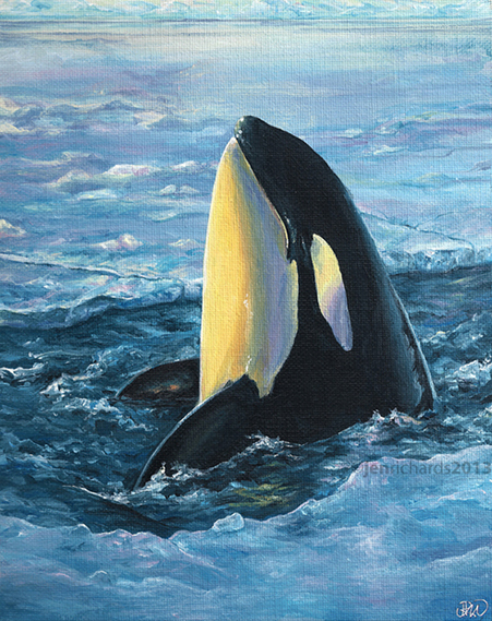 """Break Out"" - Orca, 2013 Acrylic on canvas board 8 x 10 inches  NOT FOR SALE"