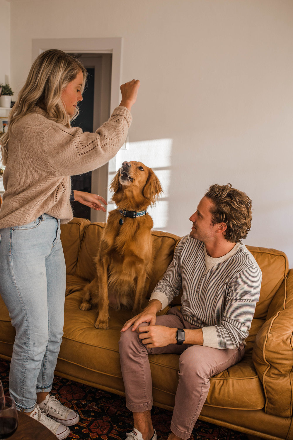 If you love goldens then you'll love this adorable in home session