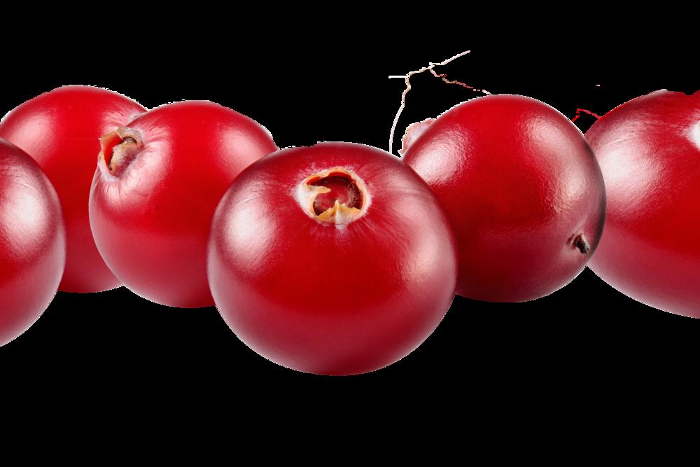 cranberries close up.png