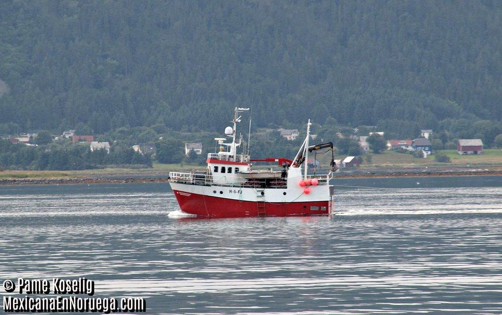 Navegando en Noruega _ Pame Koselig _ Mexicana en Noruega.jpg