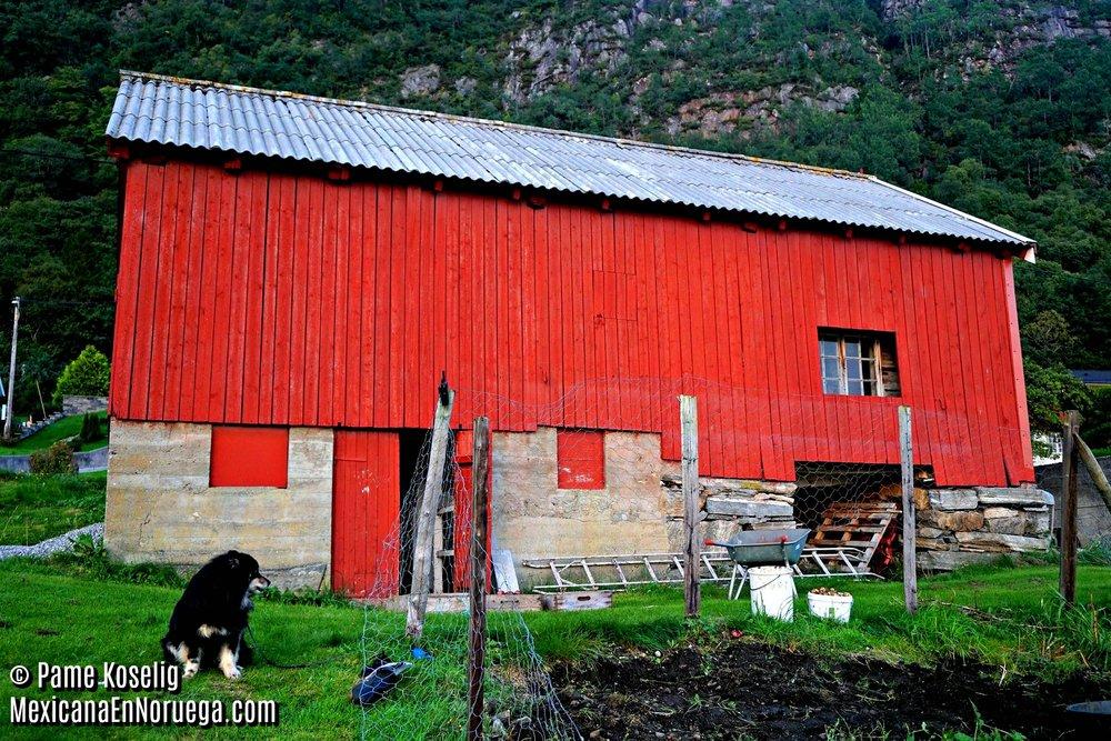 El granero _ Pame Koselig _ Mexicana en Noruega.jpg