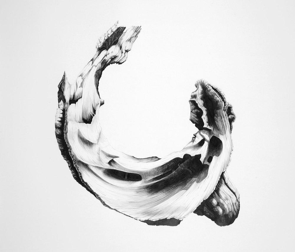 Curl.jpg