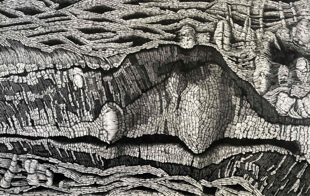 Maw-[Replica],-pencil-on-paper,-167.5-x-106.jpg