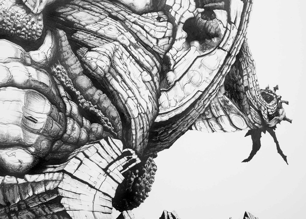 Starling,-Pencil-on-paper,-220-x-165cm,-2012-(detail-3).jpg