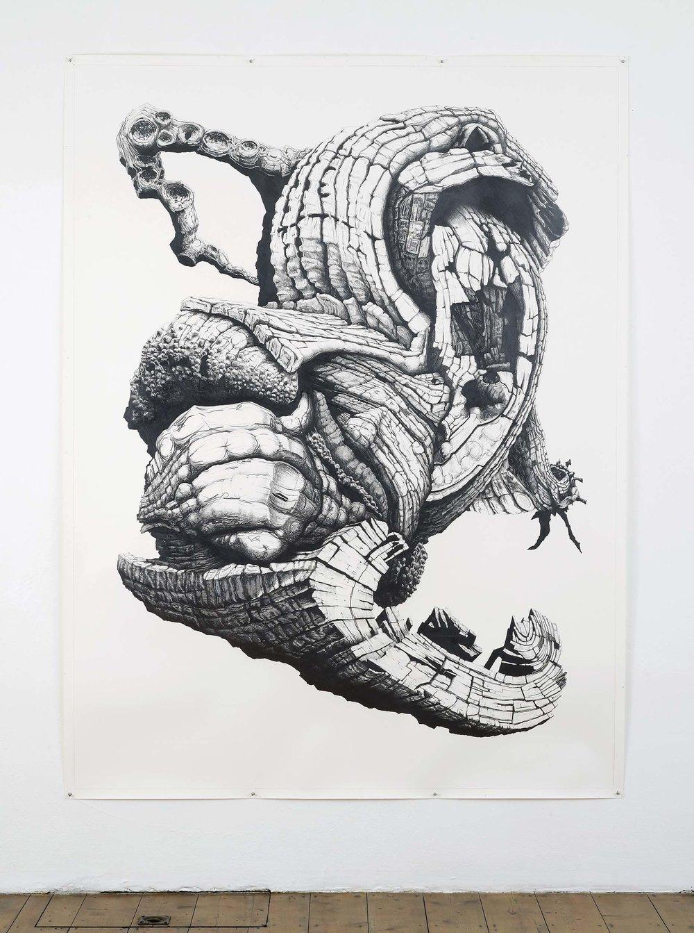 Starling,-Pencil-on-paper,-220-x-165cm,-2012-(in-situ).jpg