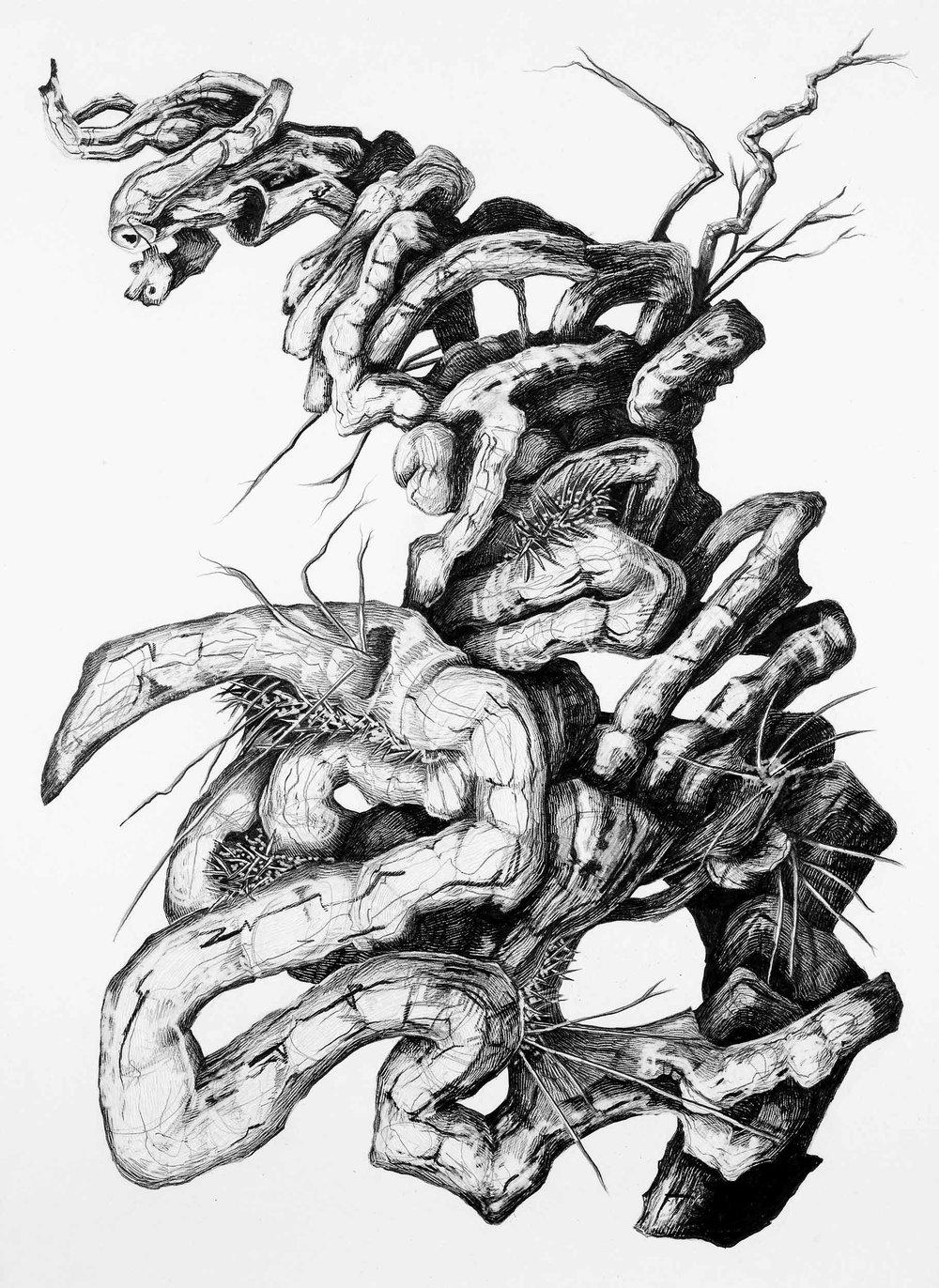 Study;-The-Body,-Pencil-on-paper,-39.5-x-28.jpg