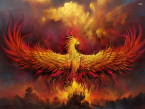 Phoenix_resized-300x225.jpg