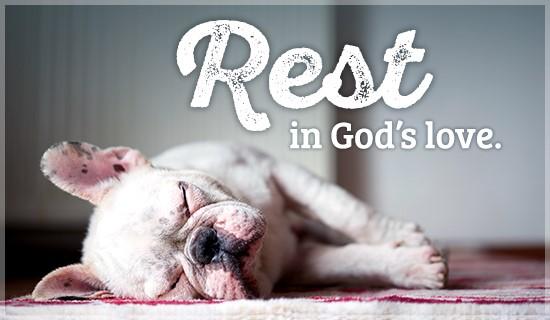 rest puppy.jpg