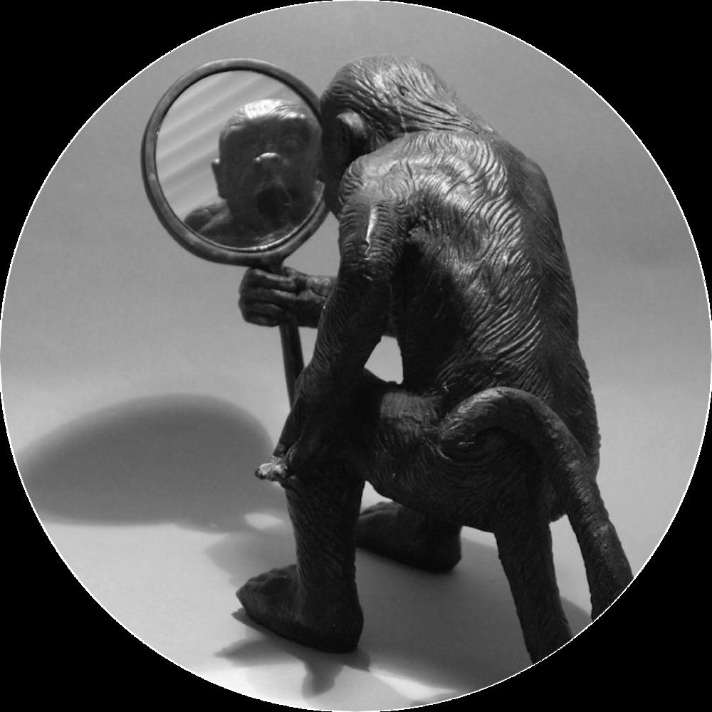 monkey mirrorArtboard 1@300x.png