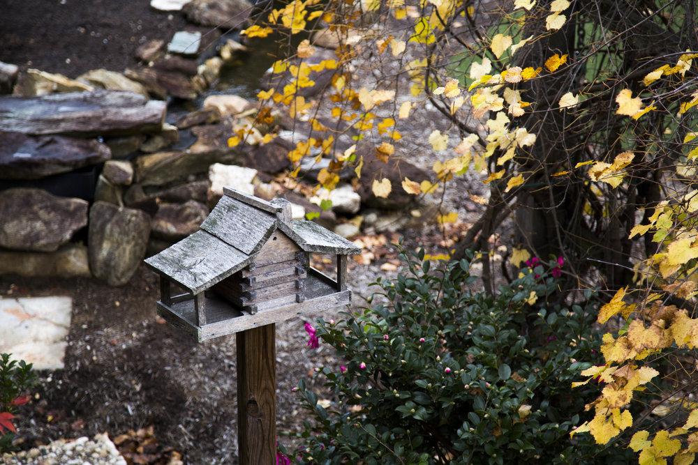 bird feeder and flowers, Pearl Mill Flats, Durham condominiums