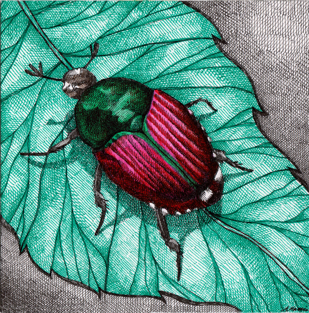 027_BeetleBug1_inkedfaithart.jpg