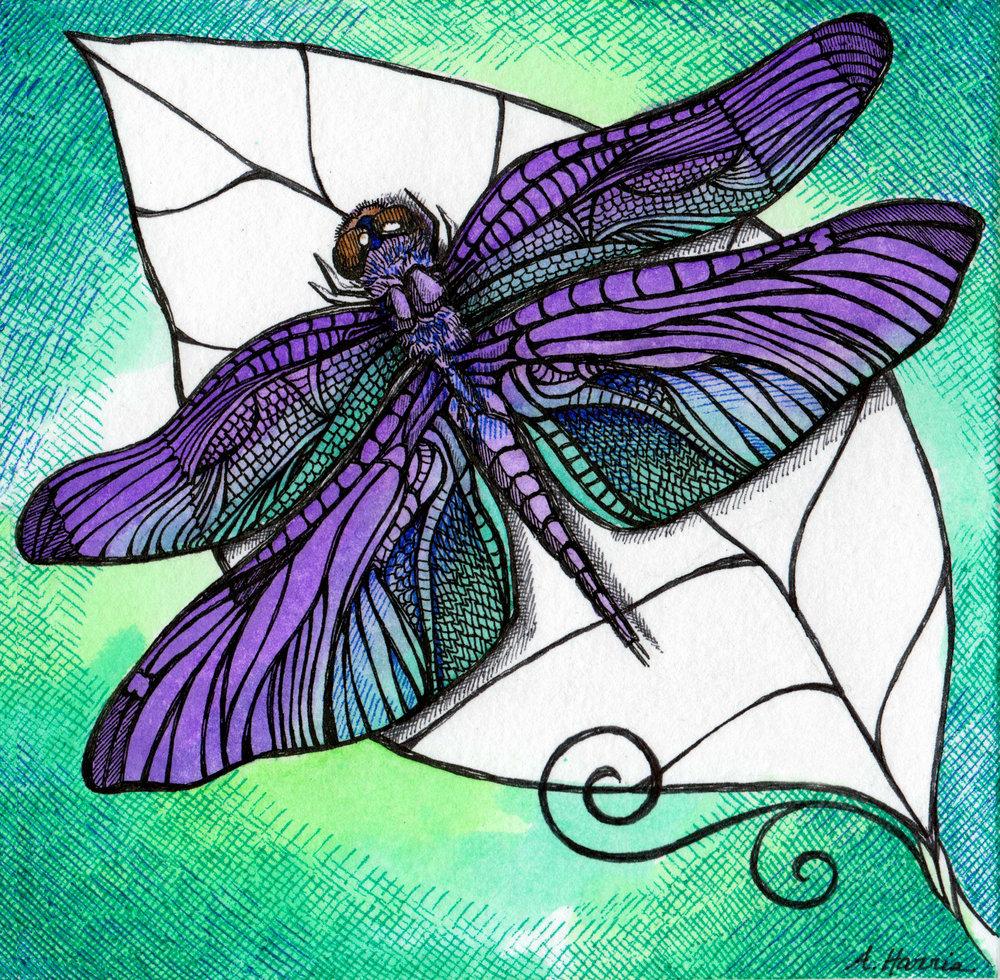 031_Violet Dragonfly_inkedfaithart.jpg