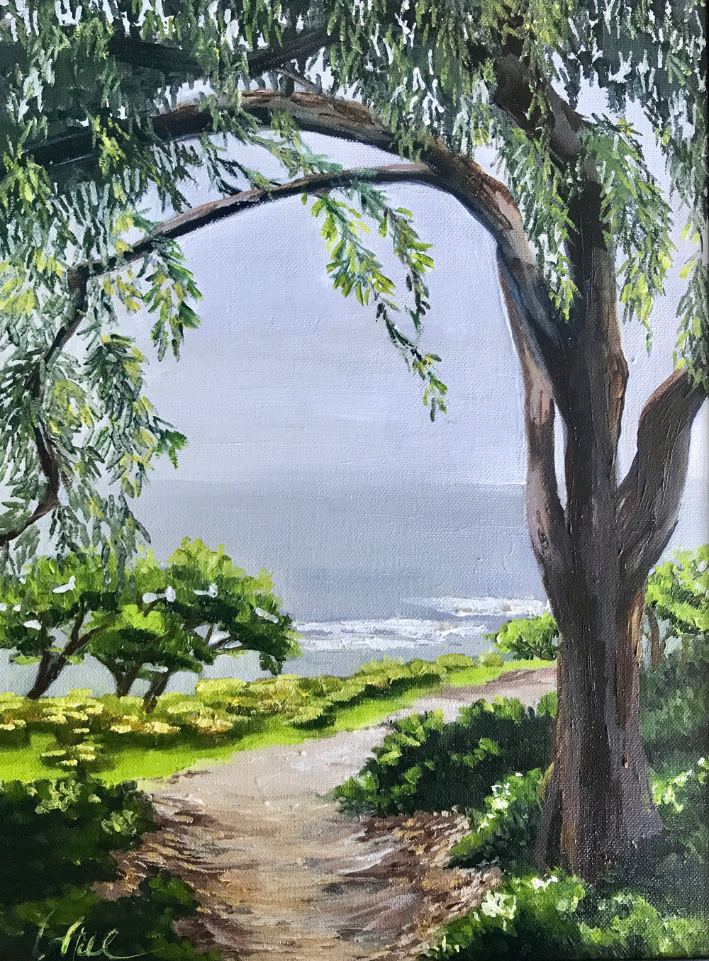 SCRIPPS HIKE | OIL | 12X16