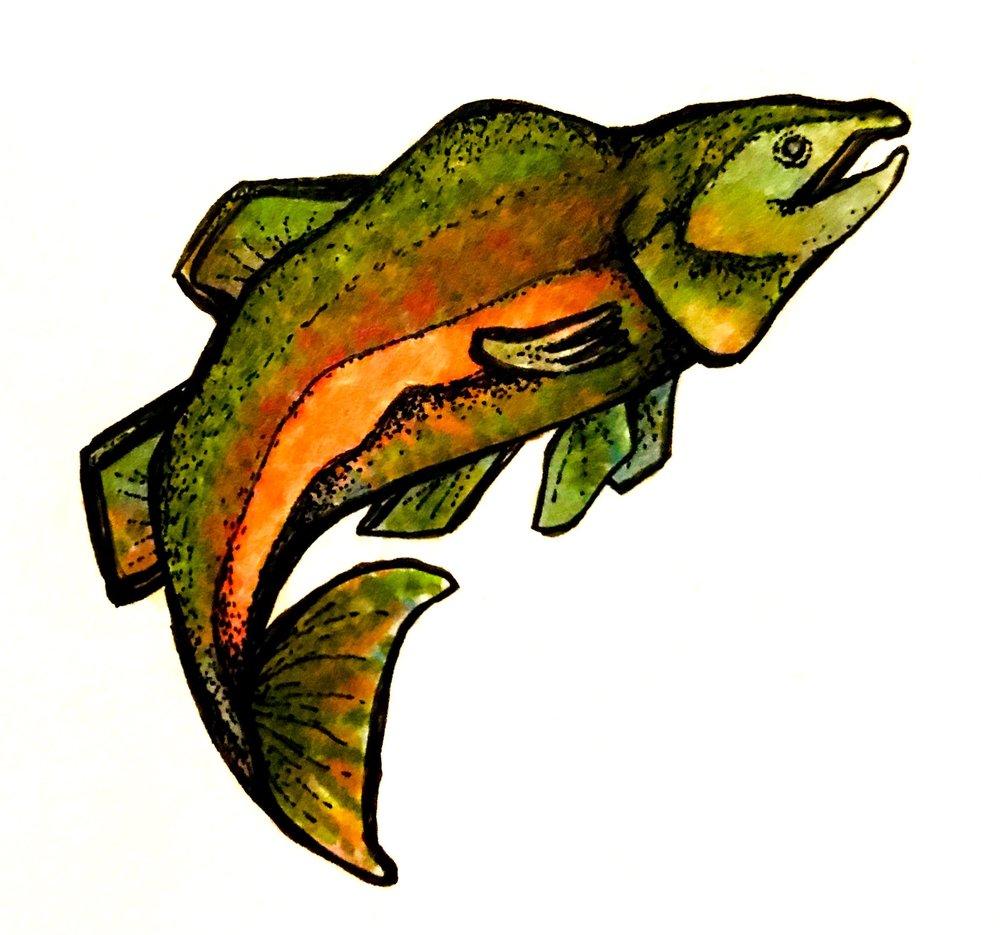 Lucky Salmon