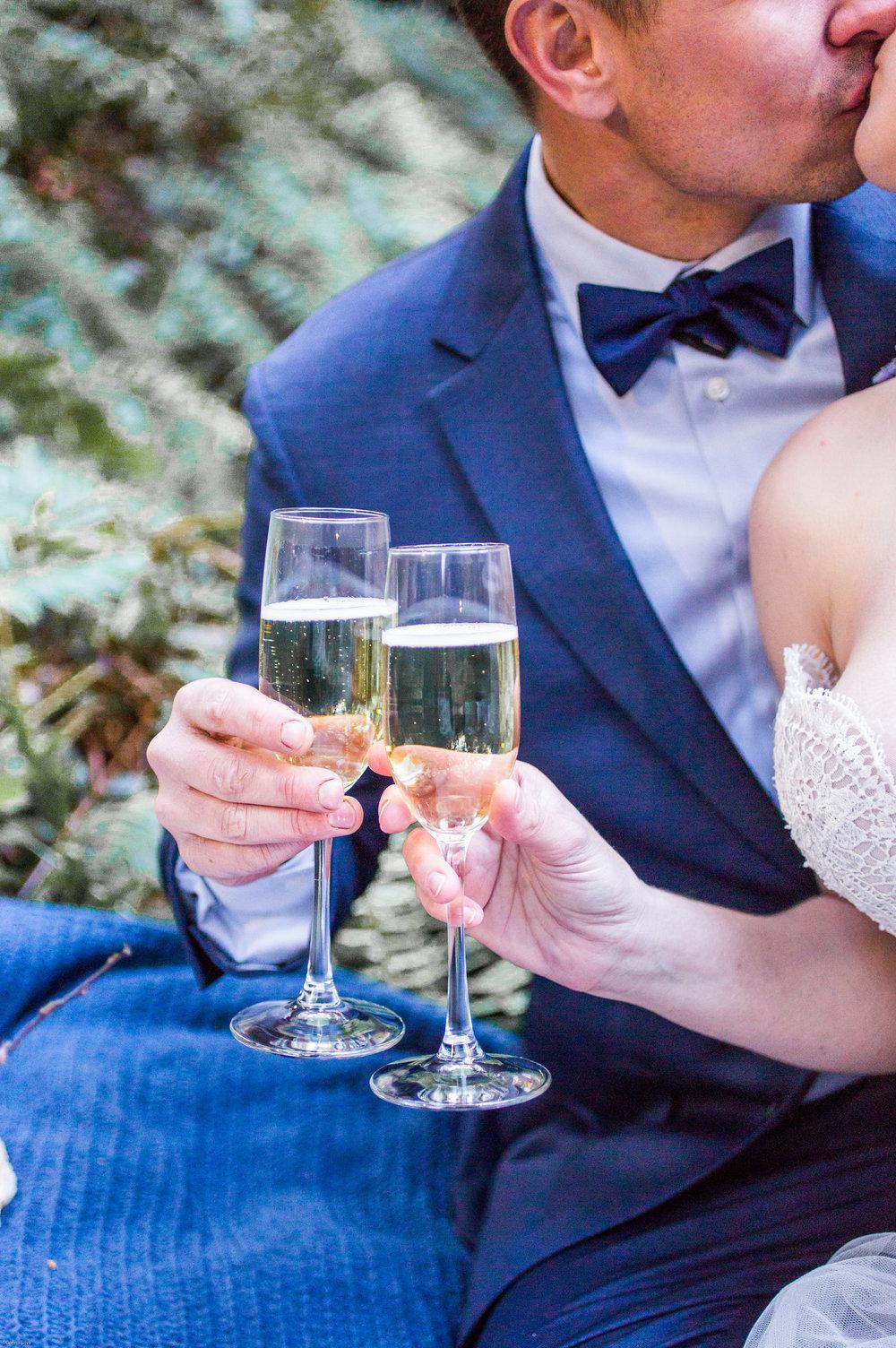 Silver Falls-elopement-bride-and-groom-photo Corina Silva Studios-318.jpg