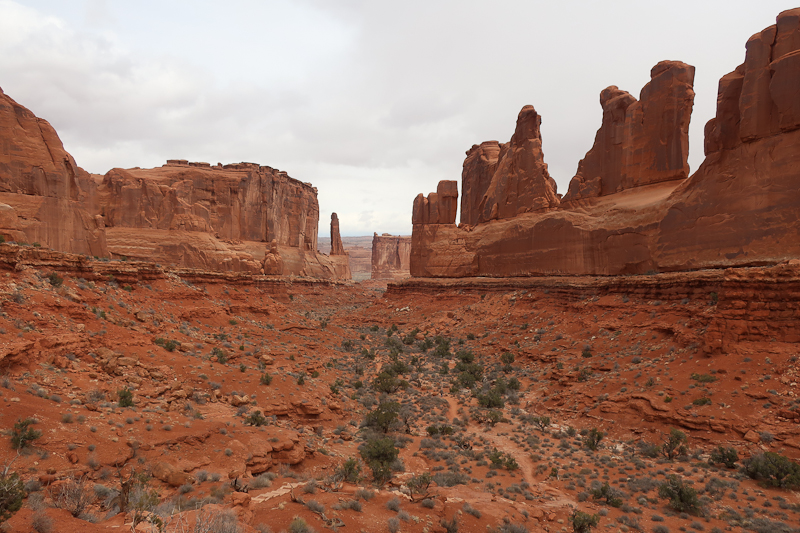 Our first walk at Arches was along this wash. It was going to a 'short walk'. This never happens, and that is ok. We were lapped by a family of four, as usual.
