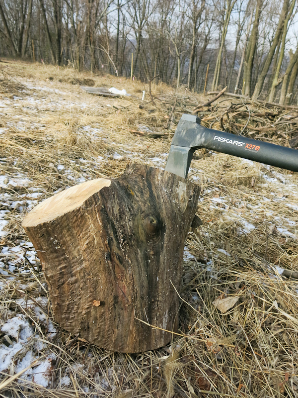 Except for the Fiskars axe, everything about this picture is wrong. This forked Norway maple is unsplittable and your love will think you an fool who should have invested in a hydraulic splitter all along.
