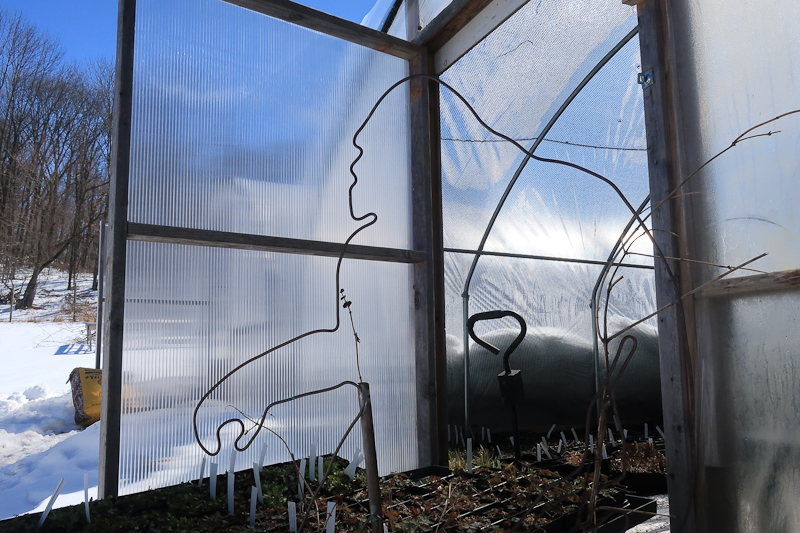 Hoop House Guardian, copper wire sculpture, gift of the artist