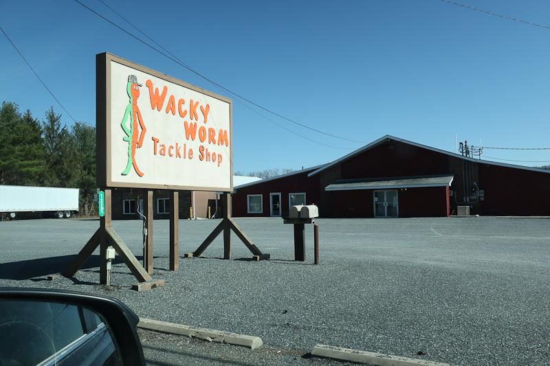 Mackow_Wacky worm-2931.jpg