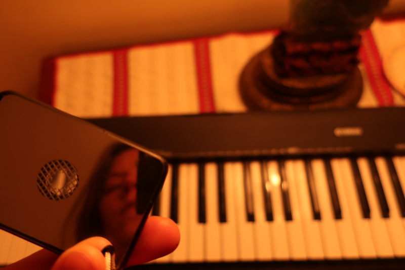 Self-portrait with keyboard and mirror, January 10, 2019