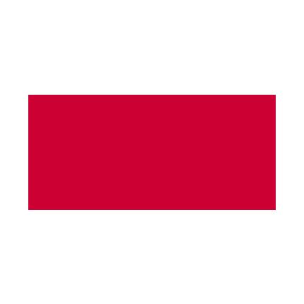 cgi-logo-430.png