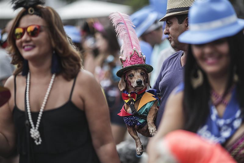 Millones de brasileños calientan las calles para disfrutar de su carnaval .jpg