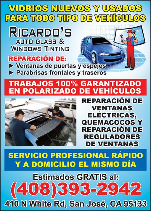 Ricardo Auto Glass 1-4 Pag JUNIO 2018 copy.jpg