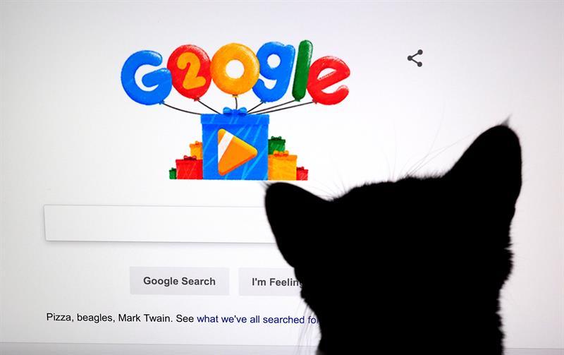 Fotografía de archivo fechada el 27 de septiembre de 2018 que muestra a un gato frente a una pantalla con el doodle por los 20 años de Google, en Mountain View, California (EE.UU.).
