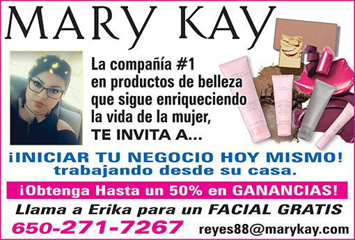 Erica Reyes - Mary Kay 1-8 Pag JULIO 2018.jpg