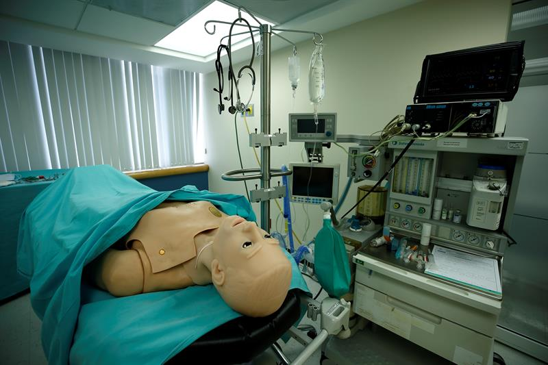 organ removal.jpg