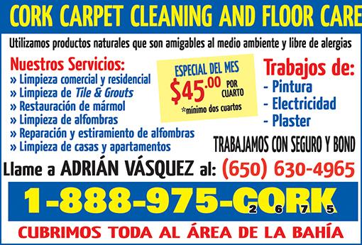 CORK Carpet Cleaning 1-8 Pag - febrero 2019.jpg