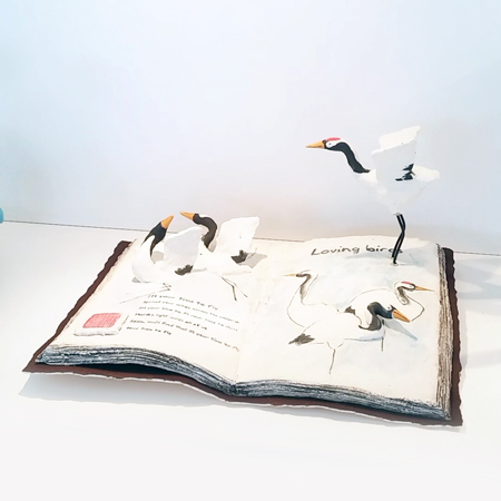 Open Book with Cranes