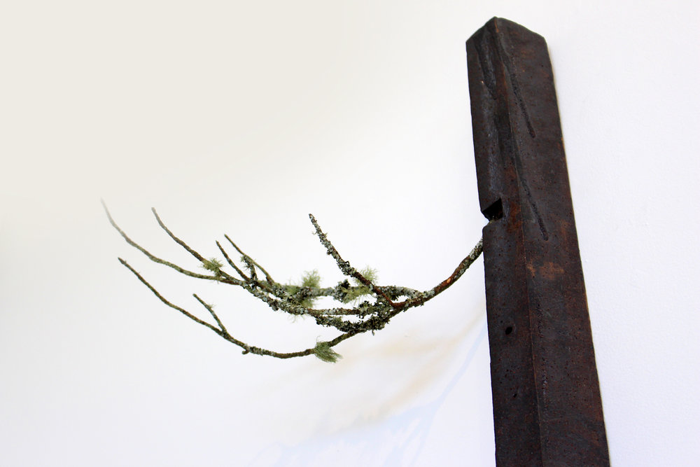 Takaaki Sakaguchi's Contribution: 'Matsu'