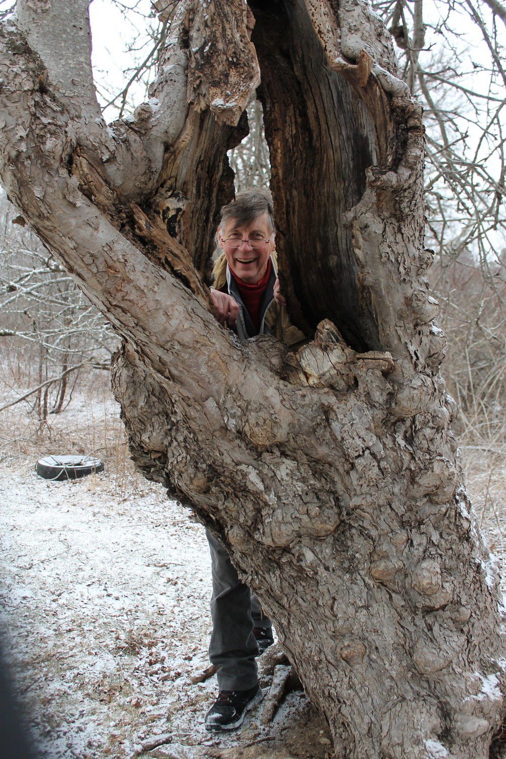 Robert McIntyre with an old apple tree in Harpswell photo by Laura Sieger