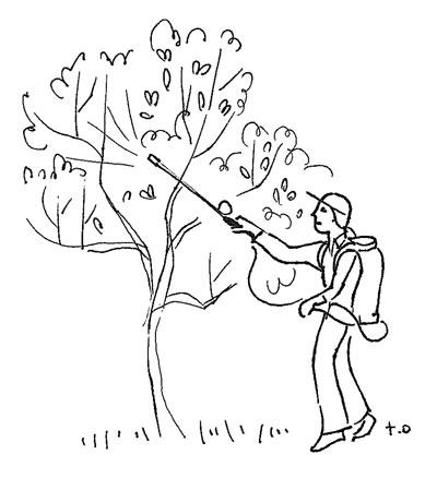 drawing by Toki Oshima