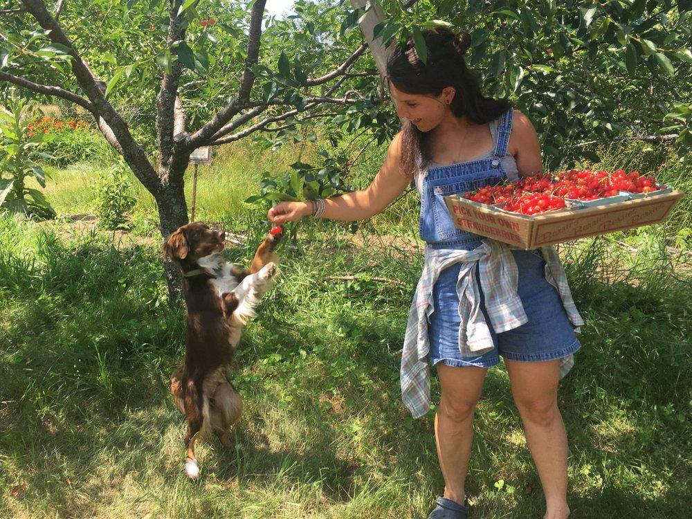 jordan levi cherries.jpg
