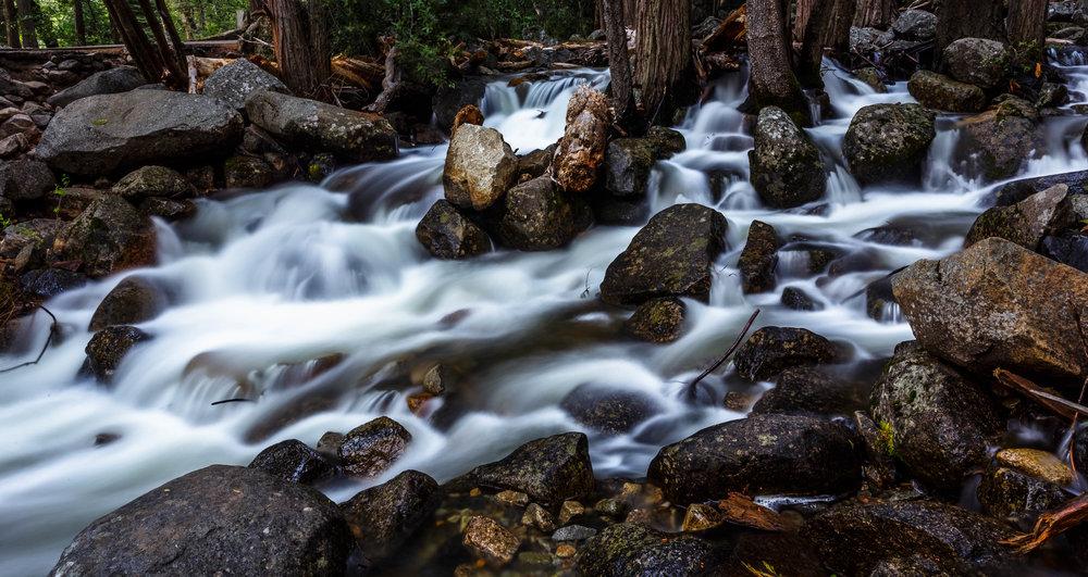 Near Brideveil Falls, Yosemite National Park, California