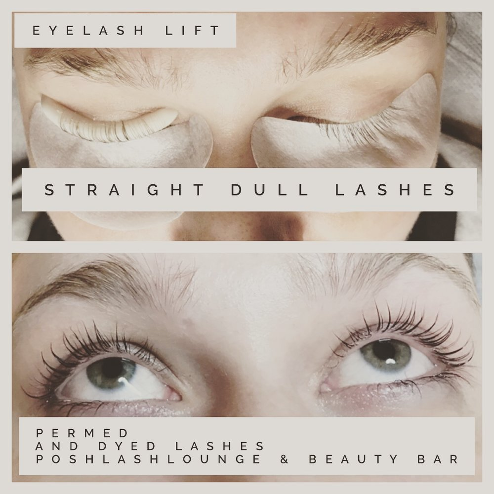 Lash Lift Posh Lash Lounge Beauty Bar