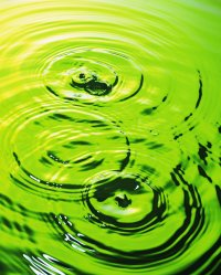 Algae treatment in Simi Valley Moorpark Westlake Village Thousand Oaks Newbury Park Agoura Hills